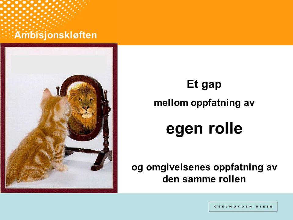 Ambisjonskløften Et gap mellom oppfatning av egen rolle og omgivelsenes oppfatning av den samme rollen