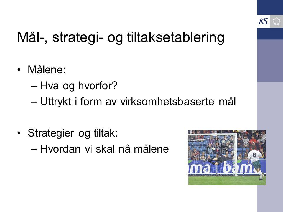 Mål-, strategi- og tiltaksetablering •Målene: –Hva og hvorfor.
