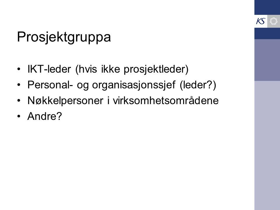 Prosjektgruppa •IKT-leder (hvis ikke prosjektleder) •Personal- og organisasjonssjef (leder?) •Nøkkelpersoner i virksomhetsområdene •Andre?
