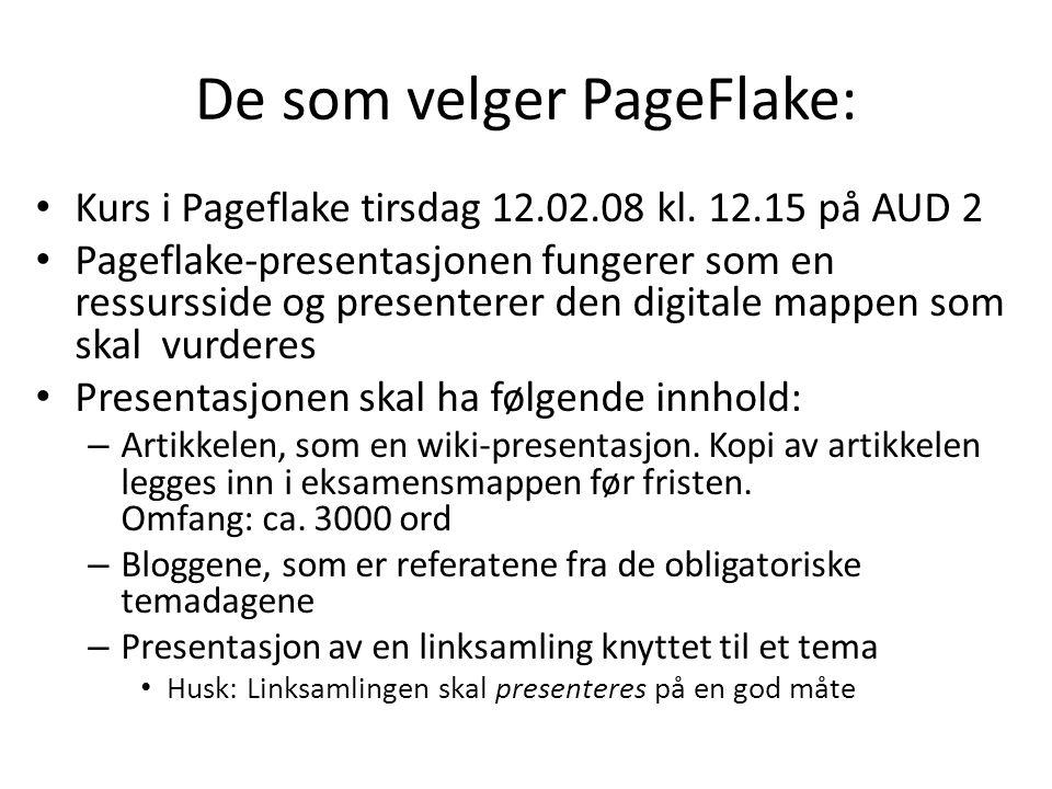 De som velger PageFlake: • Kurs i Pageflake tirsdag 12.02.08 kl. 12.15 på AUD 2 • Pageflake-presentasjonen fungerer som en ressursside og presenterer