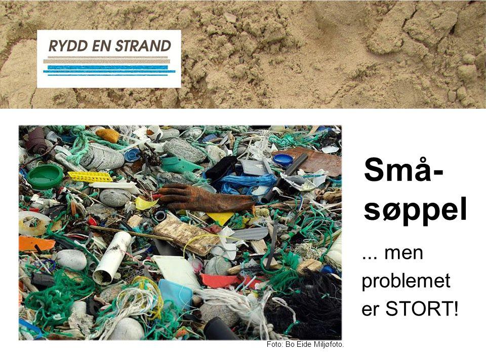 ... men problemet er STORT! Små- søppel Foto: Bo Eide Miljøfoto.