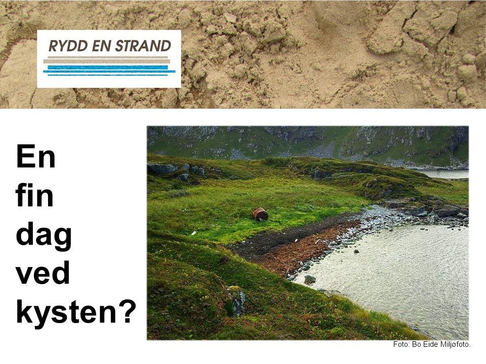 Eller kanskje ikke … Foto: Bo Eide Miljøfoto.