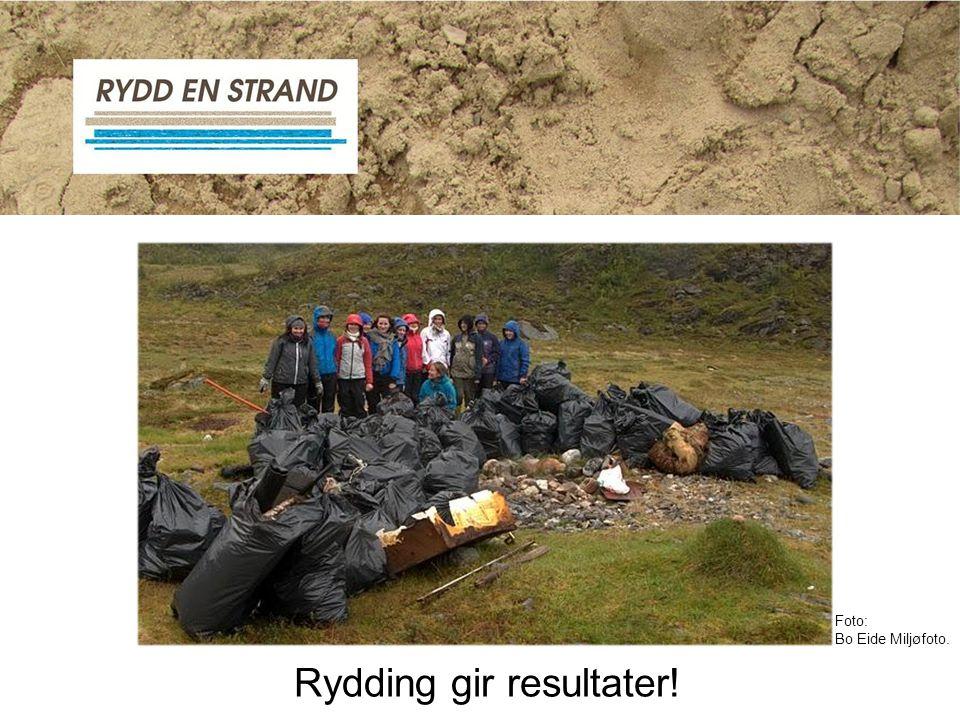 Rydding gir resultater! Foto: Bo Eide Miljøfoto.
