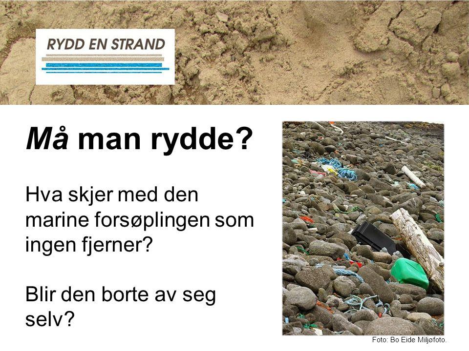 Må man rydde? Hva skjer med den marine forsøplingen som ingen fjerner? Blir den borte av seg selv? Foto: Bo Eide Miljøfoto.