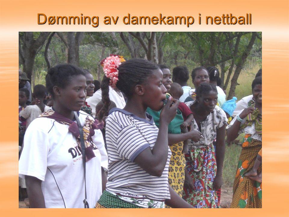 Dømming av damekamp i nettball