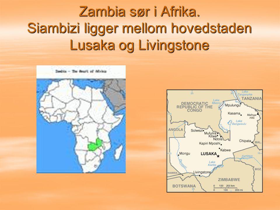 Vi samlet inn 64 000 kr som ble starten på skoleprosjektet i Zambia.