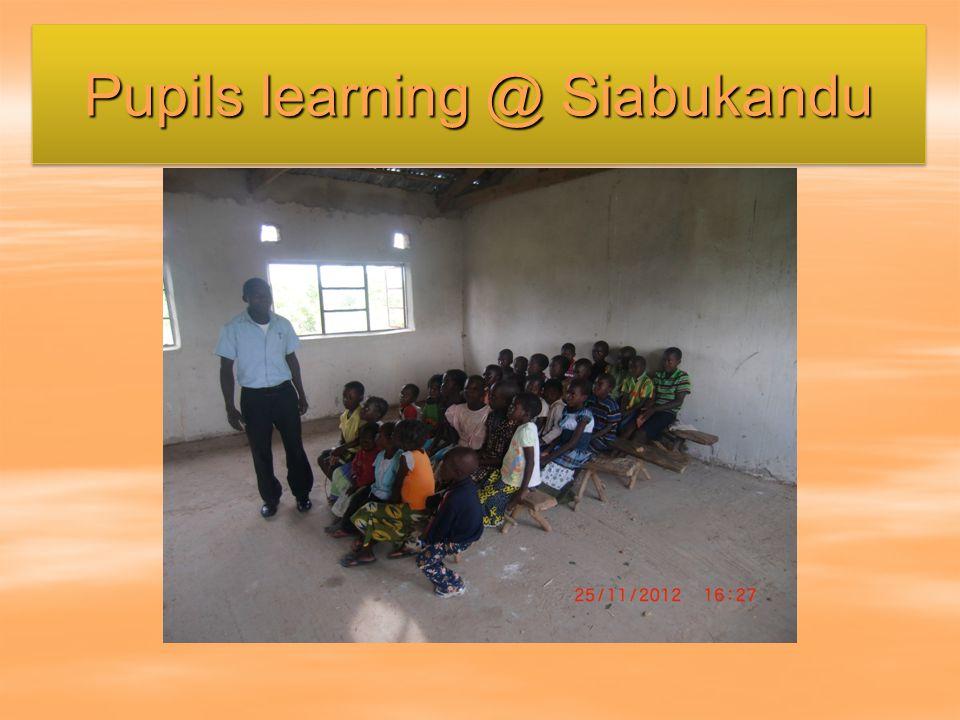Pupils learning @ Siabukandu