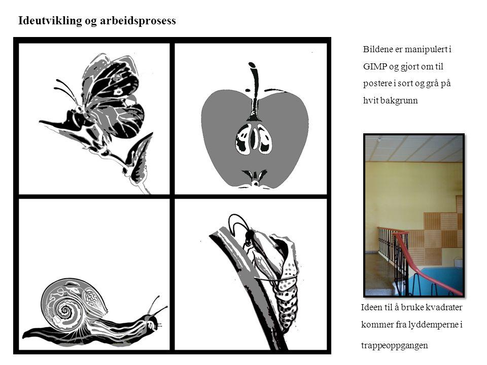 Ideutvikling og arbeidsprosess Bildene er manipulert i GIMP og gjort om til postere i sort og grå på hvit bakgrunn Ideen til å bruke kvadrater kommer
