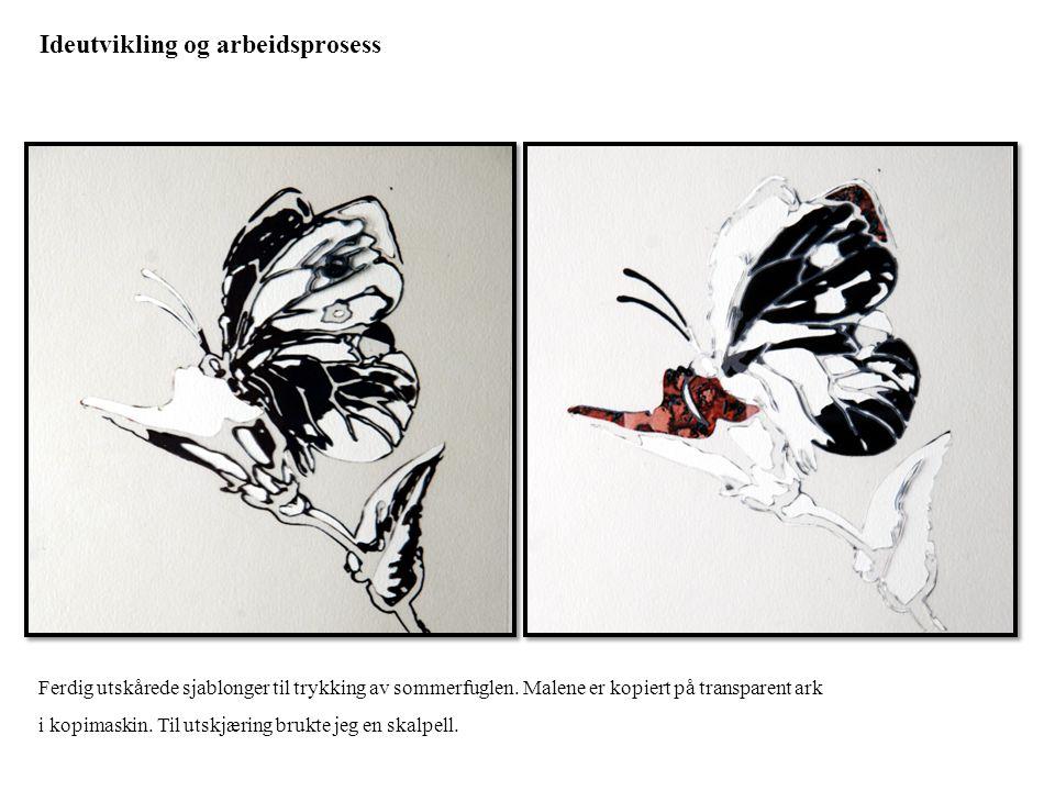 Ideutvikling og arbeidsprosess Ferdig utskårede sjablonger til trykking av sommerfuglen. Malene er kopiert på transparent ark i kopimaskin. Til utskjæ