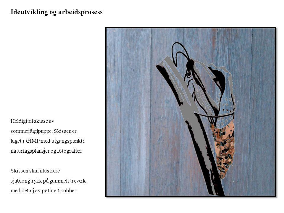 Ideutvikling og arbeidsprosess Heldigital skisse av sommerfuglpuppe. Skissen er laget i GIMP med utgangspunkt i naturfagsplansjer og fotografier. Skis