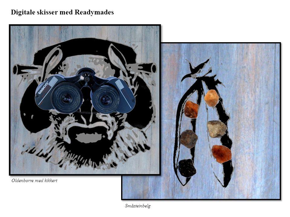 Digitale skisser med Readymades Oldenborre med kikkert Småsteinbelg