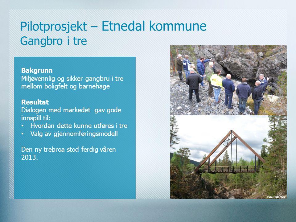 Pilotprosjekt – Etnedal kommune Gangbro i tre Bakgrunn Miljøvennlig og sikker gangbru i tre mellom boligfelt og barnehage Resultat Dialogen med marked