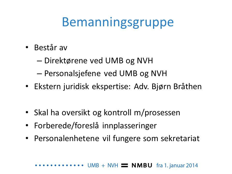 Bemanningsgruppe • Består av – Direktørene ved UMB og NVH – Personalsjefene ved UMB og NVH • Ekstern juridisk ekspertise: Adv. Bjørn Bråthen • Skal ha