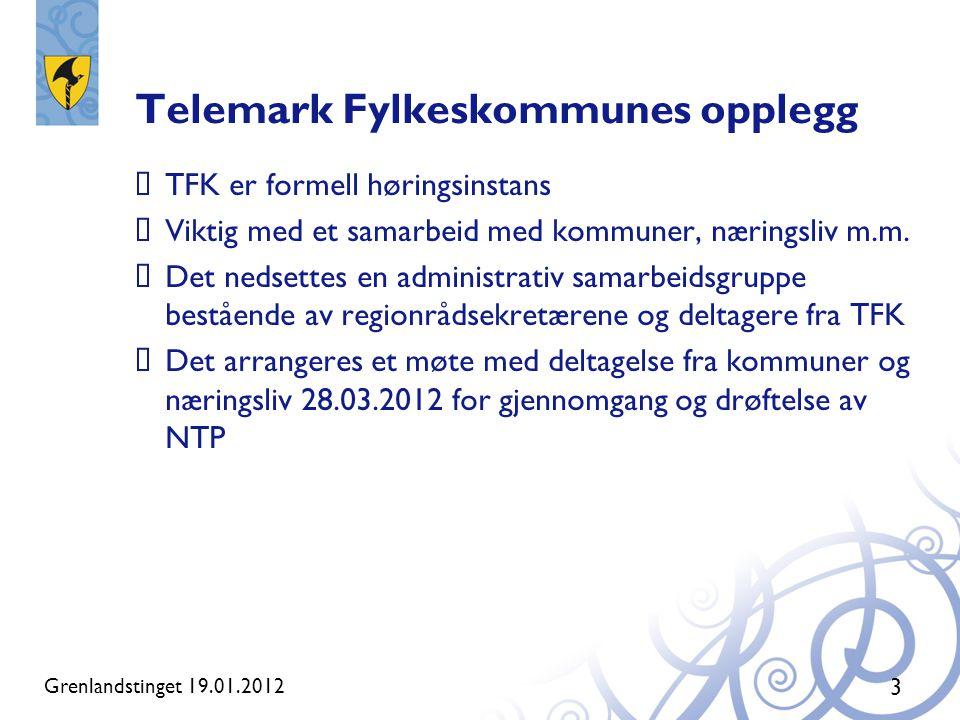 Telemark Fylkeskommunes opplegg  TFK er formell høringsinstans  Viktig med et samarbeid med kommuner, næringsliv m.m.  Det nedsettes en administrat