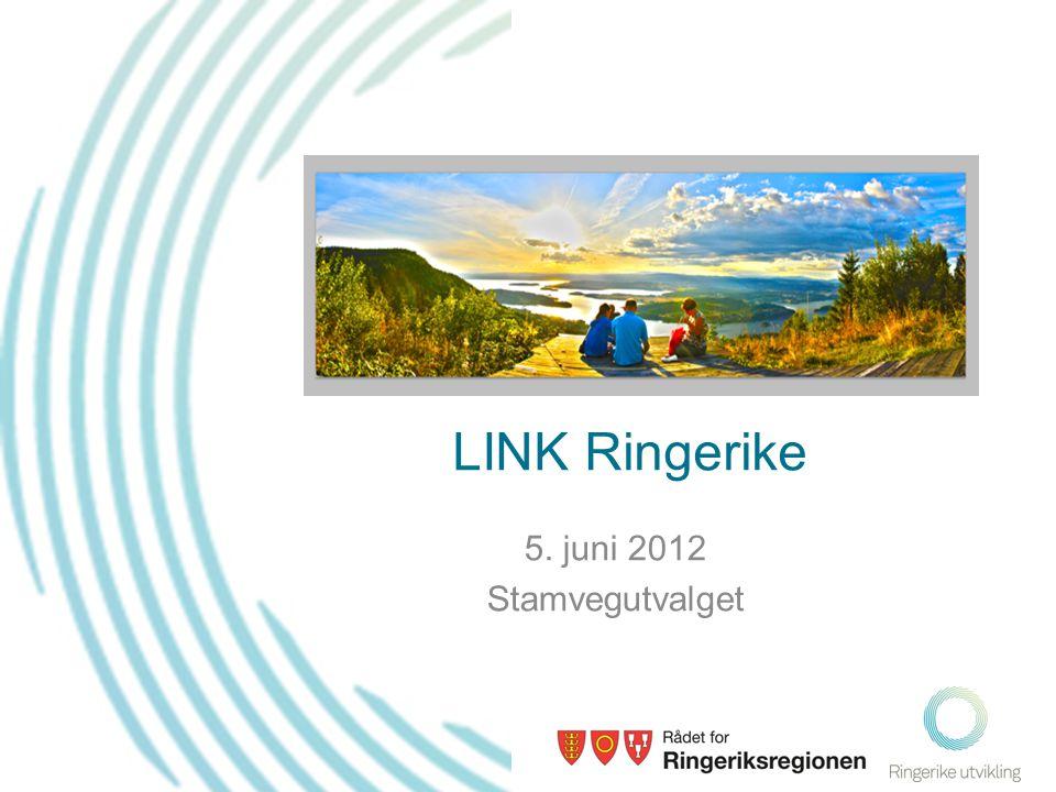 LINK Ringerike 5. juni 2012 Stamvegutvalget