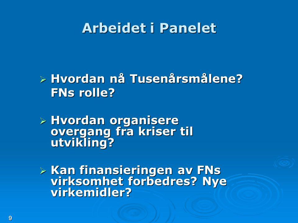 9 Arbeidet i Panelet  Hvordan nå Tusenårsmålene. FNs rolle.