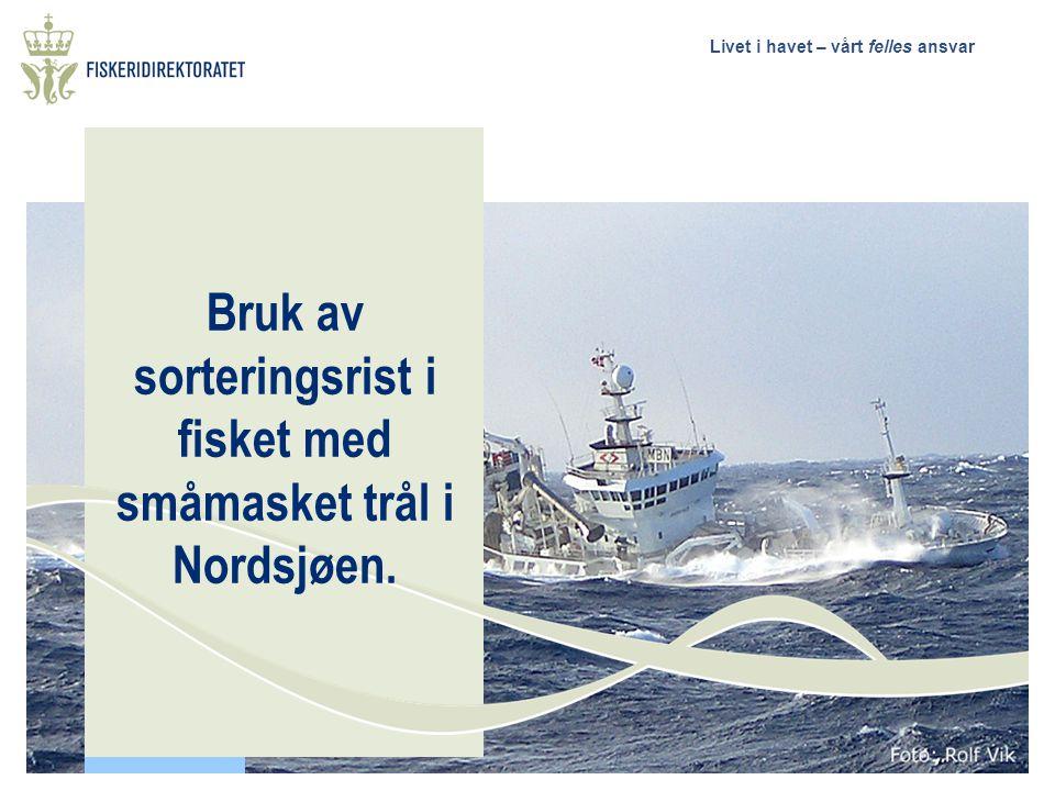 Livet i havet – vårt felles ansvar Bruk av sorteringsrist i fisket med småmasket trål i Nordsjøen.