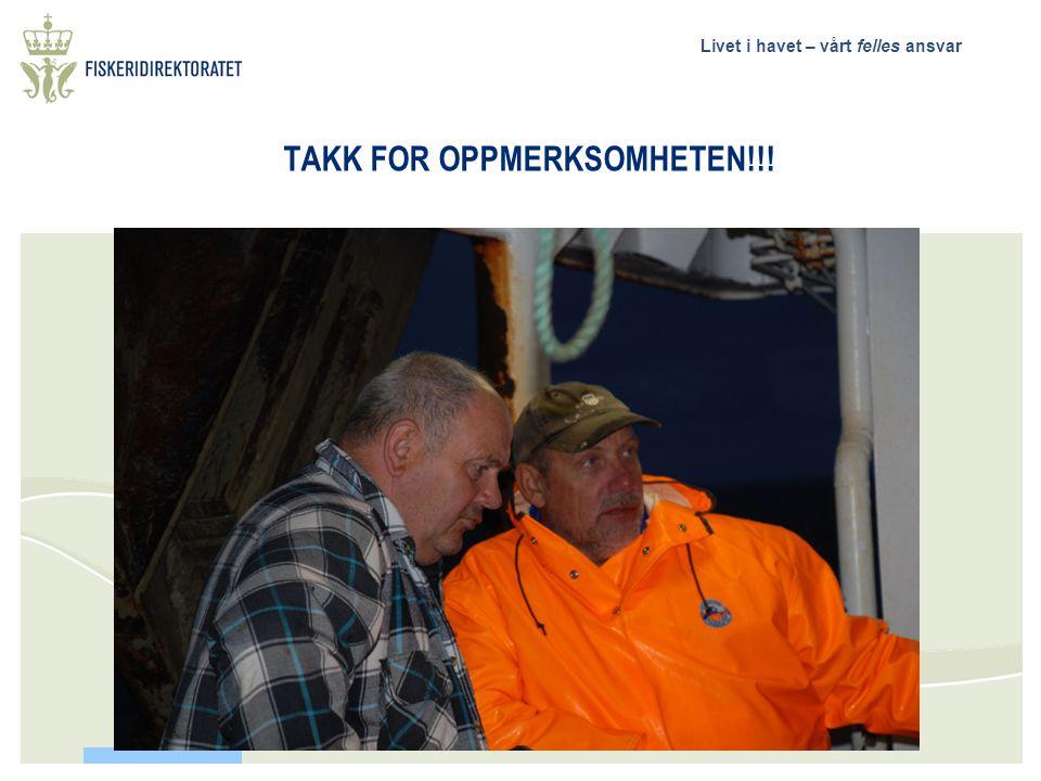 Livet i havet – vårt felles ansvar Hvilke vurderinger skal legges til grunn for fremtidige tiltak for å bedre beskatningsmønsteret for bunnfisk i Nord