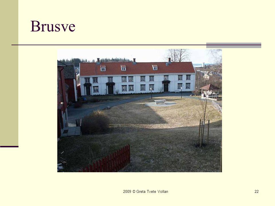 2009 © Greta Tvete Vollan22 Brusve