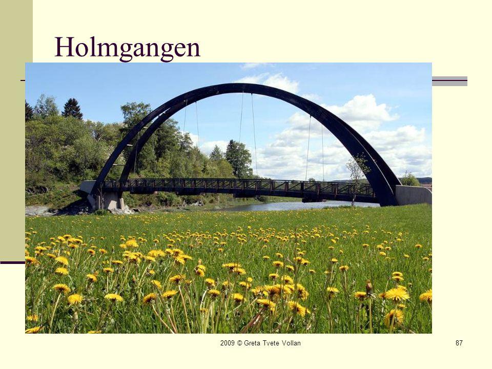 2009 © Greta Tvete Vollan87 Holmgangen