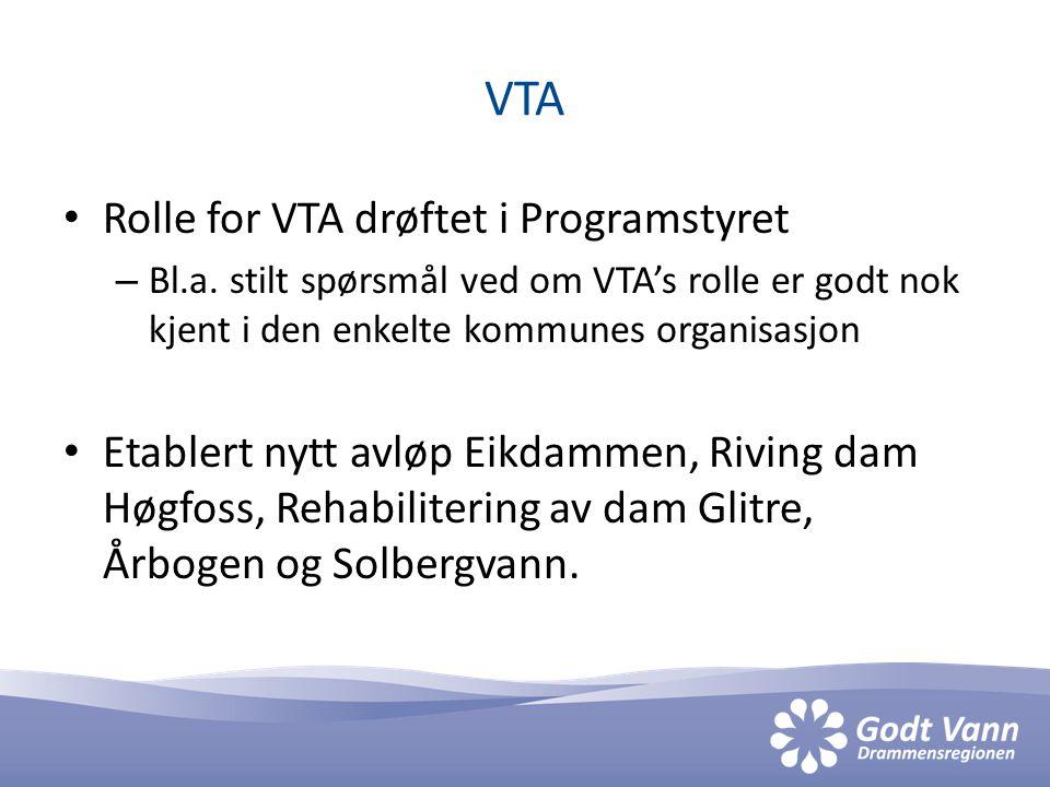 VTA • Rolle for VTA drøftet i Programstyret – Bl.a.