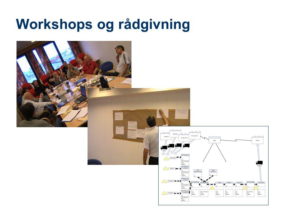 Teknologi og samfunn Workshops og rådgivning 8