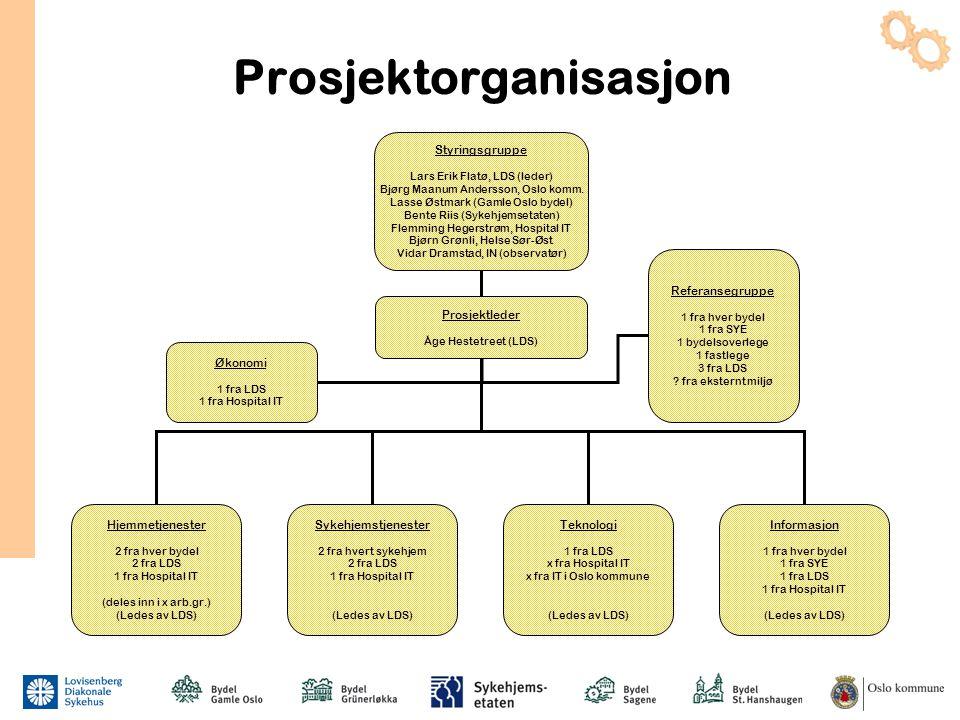 Prosjektorganisasjon Styringsgruppe Lars Erik Flatø, LDS (leder) Bjørg Maanum Andersson, Oslo komm. Lasse Østmark (Gamle Oslo bydel) Bente Riis (Sykeh