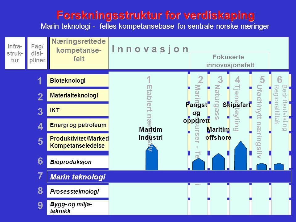11 Bioproduksjon Prosessteknologi Bygg- og miljø- teknikk Energi og petroleum Bioteknologi Materialteknologi IKT Produktivitet /Marked Kompetanseledel