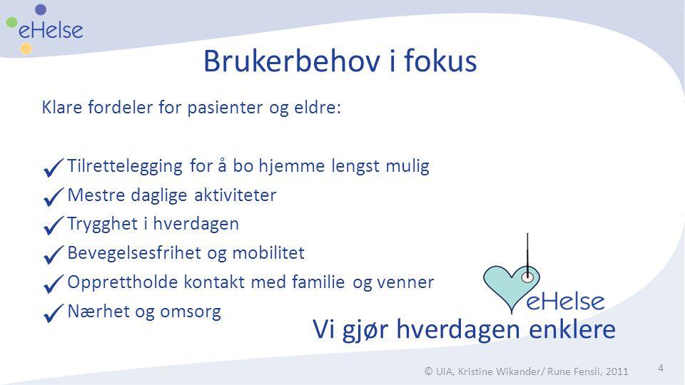 Brukerbehov i fokus Klare fordeler for pasienter og eldre:  Tilrettelegging for å bo hjemme lengst mulig  Mestre daglige aktiviteter  Trygghet i hv