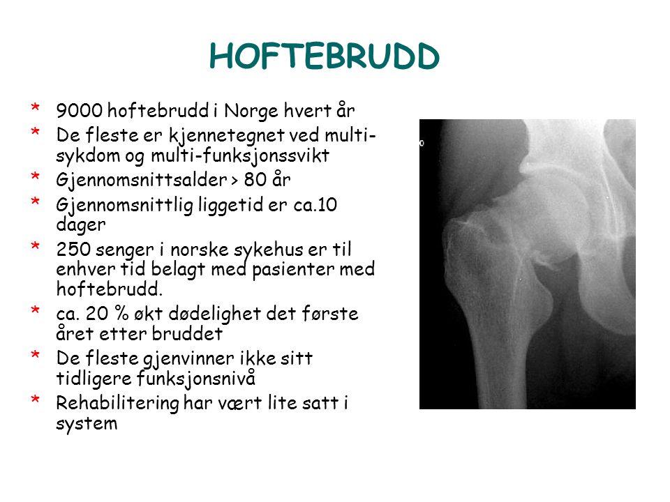 HOFTEBRUDD *9000 hoftebrudd i Norge hvert år *De fleste er kjennetegnet ved multi- sykdom og multi-funksjonssvikt *Gjennomsnittsalder > 80 år *Gjennom