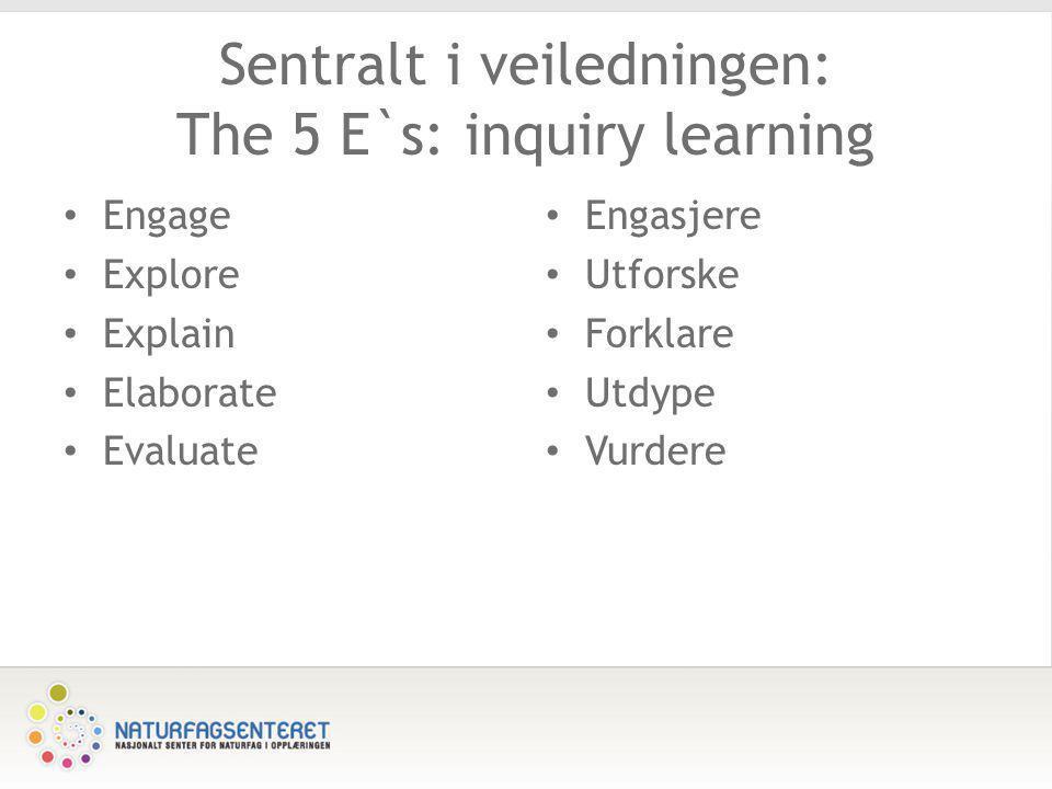 Sentralt i veiledningen: The 5 E`s: inquiry learning • Engage • Explore • Explain • Elaborate • Evaluate • Engasjere • Utforske • Forklare • Utdype •