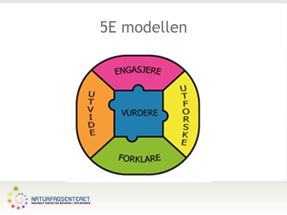 5E modellen