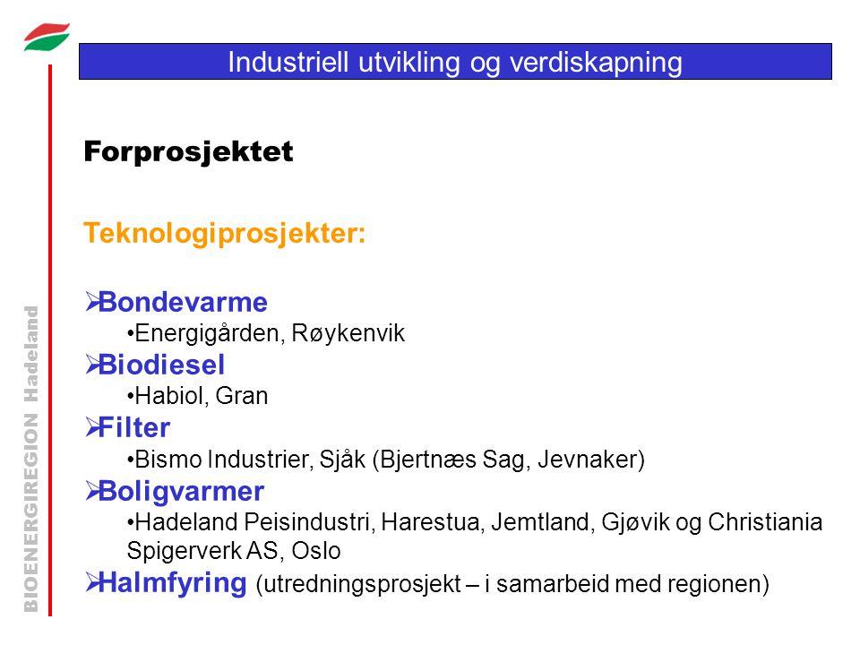 BIOENERGIREGION Hadeland Industriell utvikling og verdiskapning Forprosjektet Teknologiprosjekter:  Bondevarme •Energigården, Røykenvik  Biodiesel •