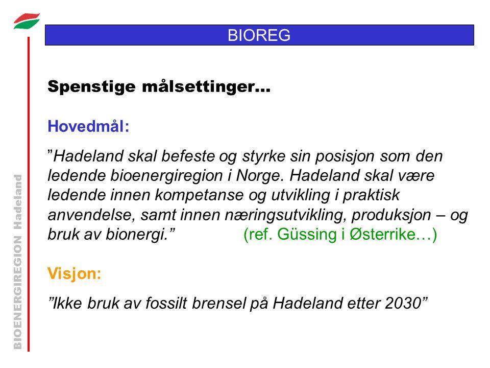 BIOENERGIREGION Hadeland BIOREG Spenstige målsettinger… Hovedmål: Hadeland skal befeste og styrke sin posisjon som den ledende bioenergiregion i Norge.