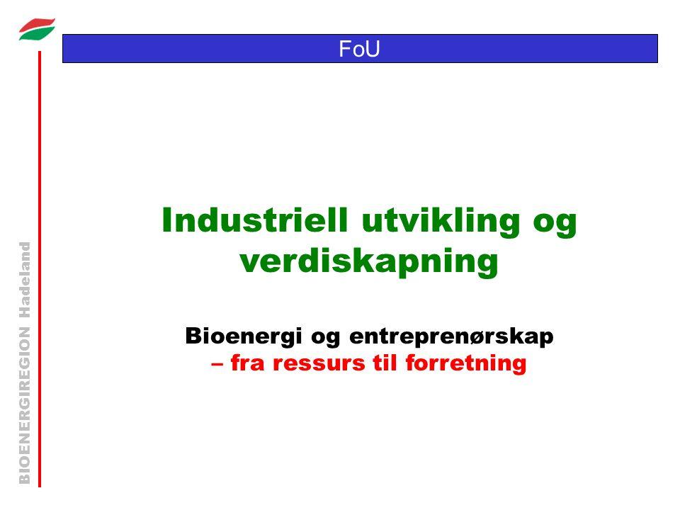 BIOENERGIREGION Hadeland FoU Industriell utvikling og verdiskapning Bioenergi og entreprenørskap – fra ressurs til forretning