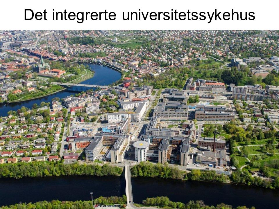 Det integrerte universitetssykehus