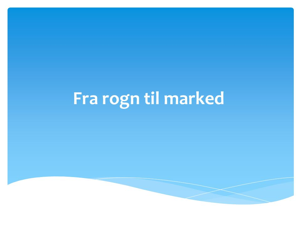 Fra rogn til marked