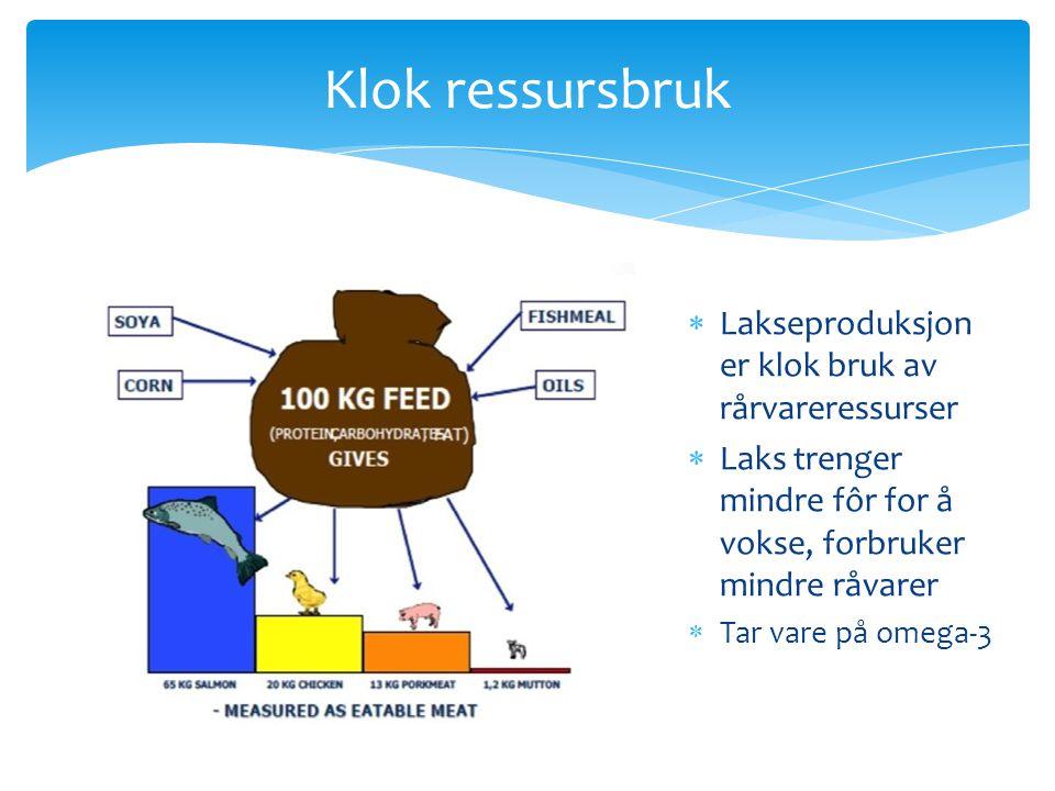Klok ressursbruk  Lakseproduksjon er klok bruk av rårvareressurser  Laks trenger mindre fôr for å vokse, forbruker mindre råvarer  Tar vare på omeg