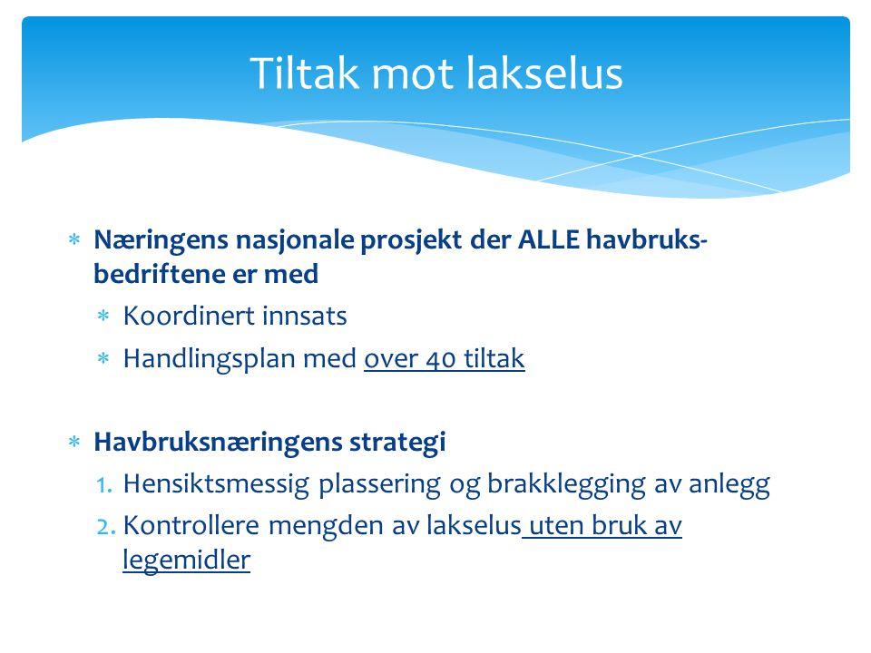 Tiltak mot lakselus  Næringens nasjonale prosjekt der ALLE havbruks- bedriftene er med  Koordinert innsats  Handlingsplan med over 40 tiltak  Havb