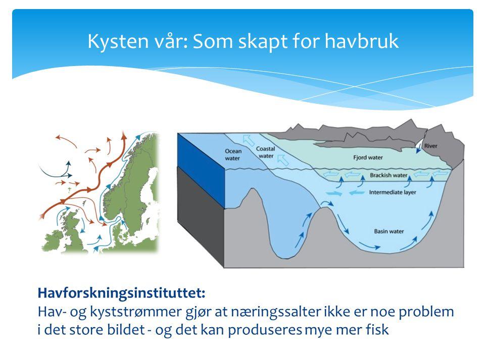 Kysten vår: Som skapt for havbruk Havforskningsinstituttet: Hav- og kyststrømmer gjør at næringssalter ikke er noe problem i det store bildet - og det