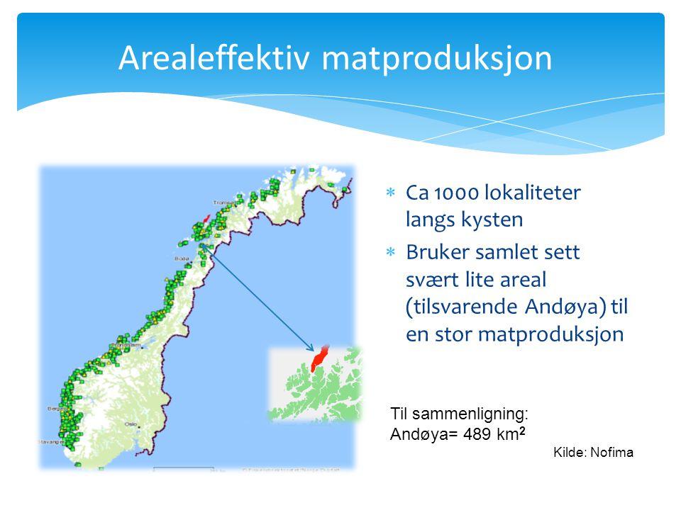 Pr. 29.11.2009 Til sammenligning: Andøya= 489 km 2 Kilde: Nofima Arealeffektiv matproduksjon  Ca 1000 lokaliteter langs kysten  Bruker samlet sett s