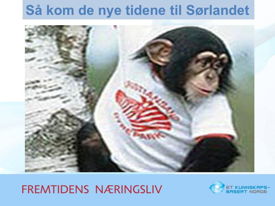 Sørlandet i utvikling 1.Dyreparken 2.Oil Industry Services 3.Nycomed 4.Venturekapital fra Farsund