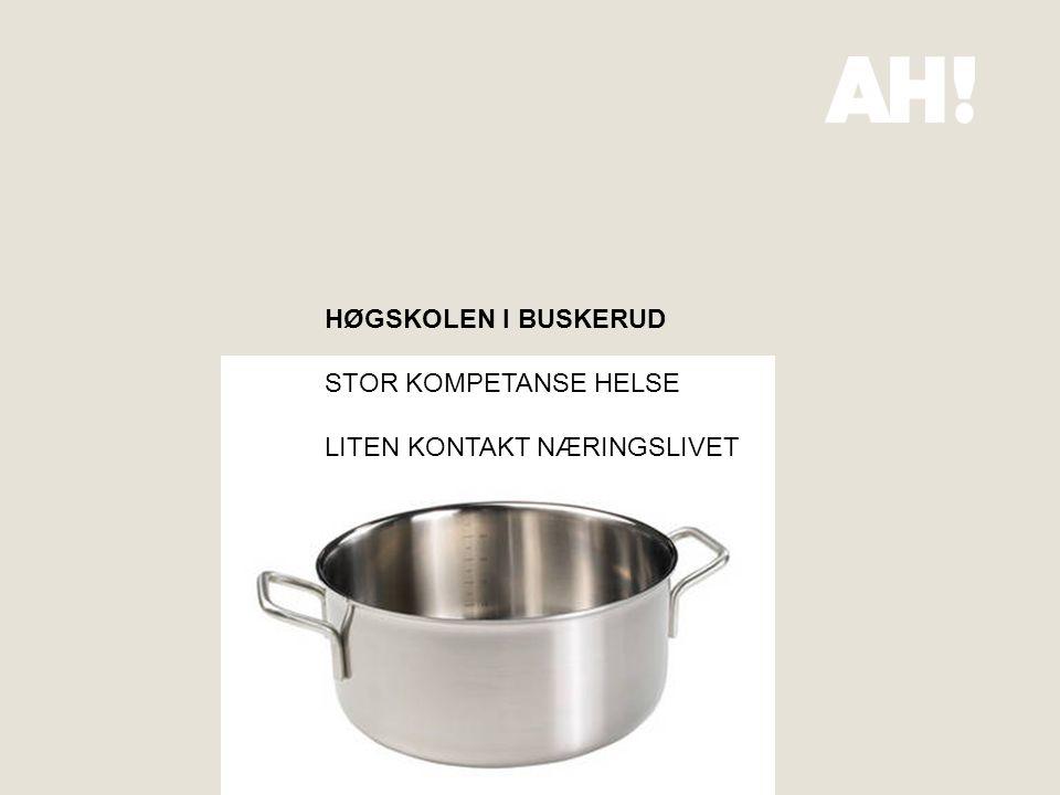 HØGSKOLEN I BUSKERUD STOR KOMPETANSE HELSE LITEN KONTAKT NÆRINGSLIVET