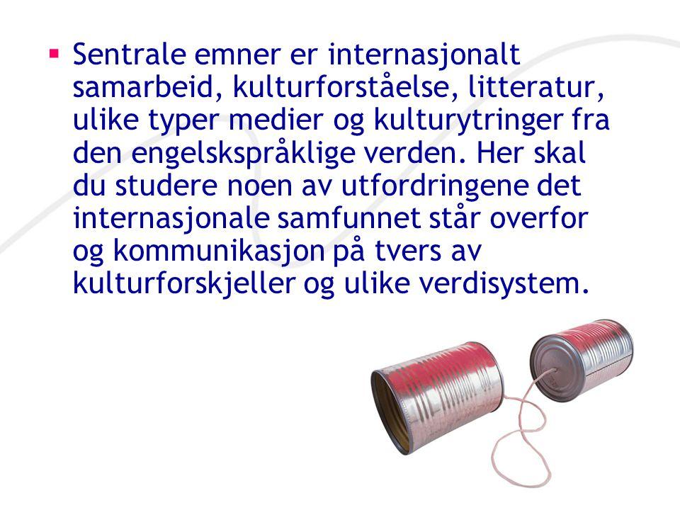  Sentrale emner er internasjonalt samarbeid, kulturforståelse, litteratur, ulike typer medier og kulturytringer fra den engelskspråklige verden. Her