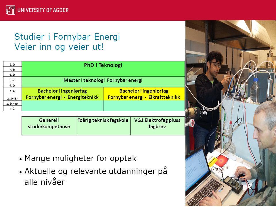 Studier i Fornybar Energi Veier inn og veier ut.8.