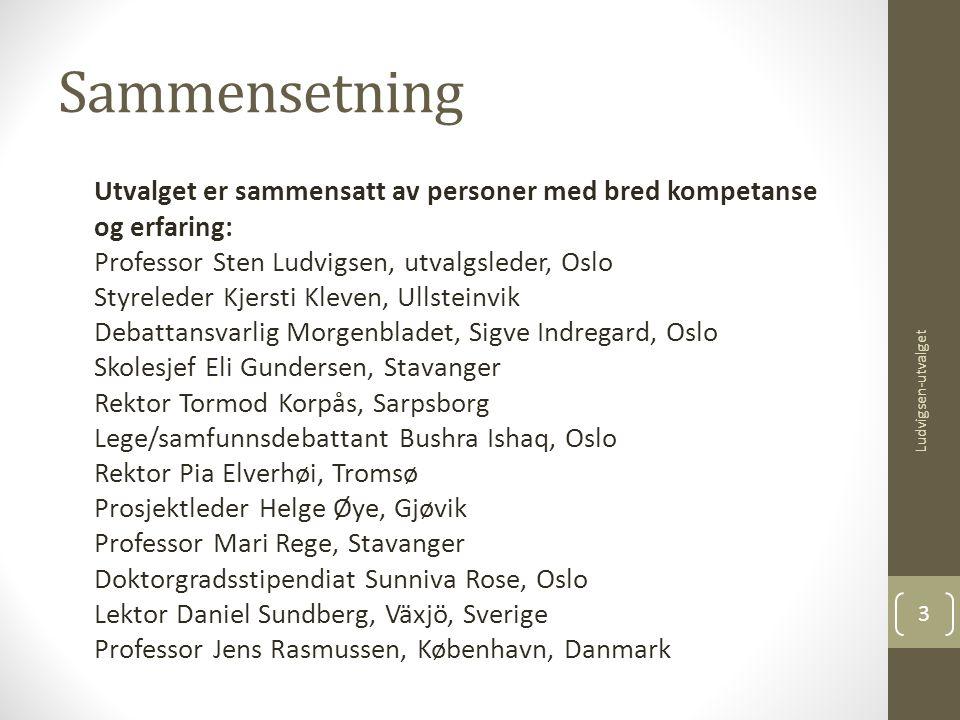 Sammensetning Utvalget er sammensatt av personer med bred kompetanse og erfaring: Professor Sten Ludvigsen, utvalgsleder, Oslo Styreleder Kjersti Klev