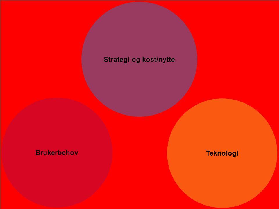 Kan man ikke utfordre forrige ledd, vil mulighetene kun bli mindre Strategi og kost/nytte Teknologi Brukerbehov Mandat Skisser