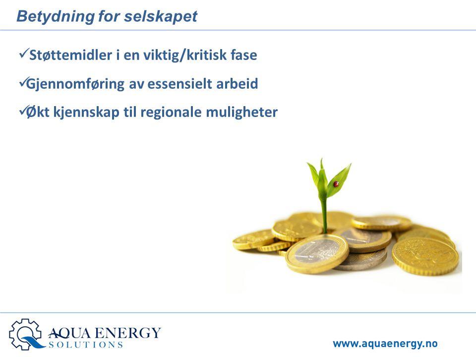 Betydning for selskapet  Støttemidler i en viktig/kritisk fase  Gjennomføring av essensielt arbeid  Økt kjennskap til regionale muligheter