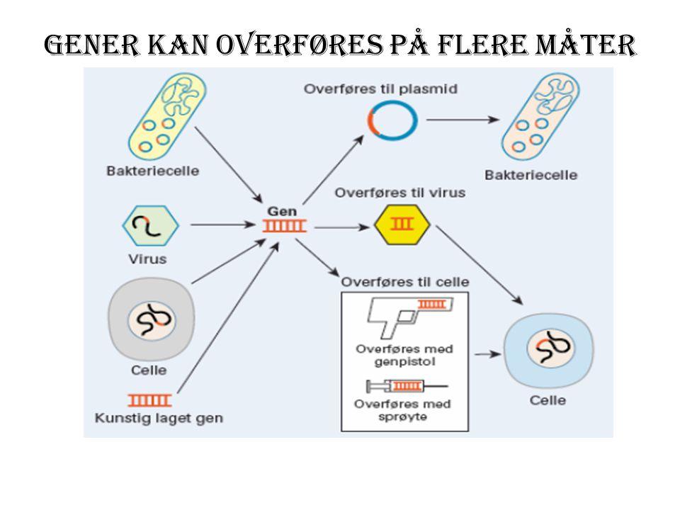 Gener kan overføres på flere måter