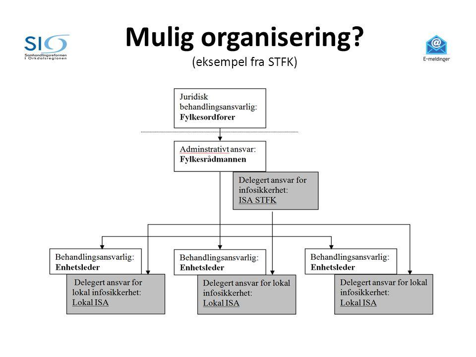 Mulig organisering? (eksempel fra STFK)